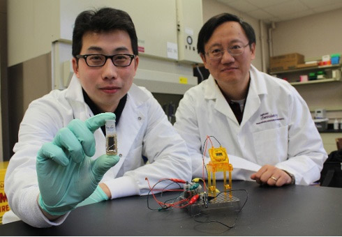 Professor Zhang und die Glukose-Brennstoffzelle (Foto: Virginia Tech College of Agriculture and Life Sciences)